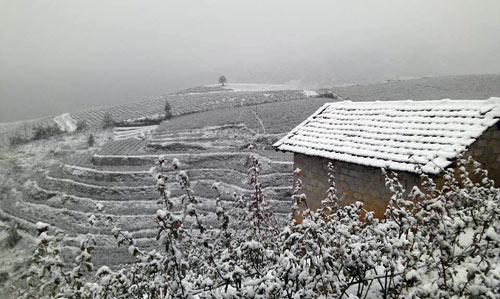 Thưởng thức ẩm thực Sa Pa những ngày tuyết rơi
