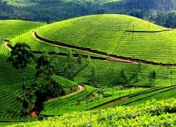 Những điểm đến mát rượi vào mùa hè ở Việt Nam
