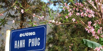 Những điều chưa biết về đường Hạnh Phúc-Hà Giang